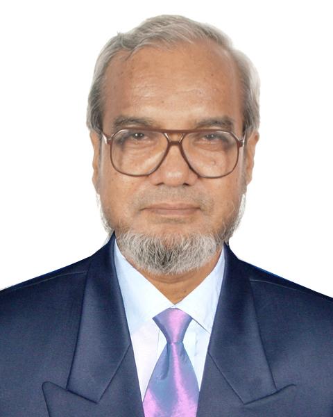 Prof. Dr. Delawer Hossain